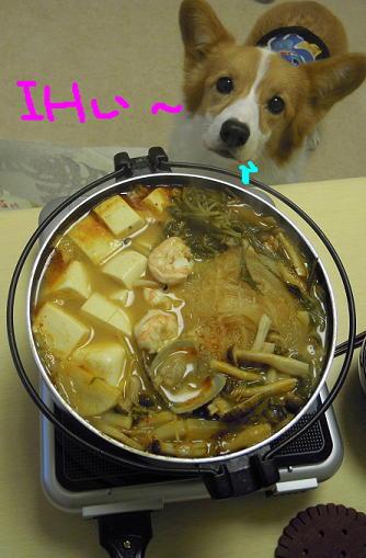 トムヤム鍋(1)