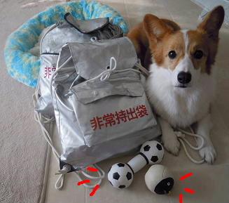 避難袋準備