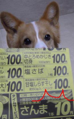 10円さんま