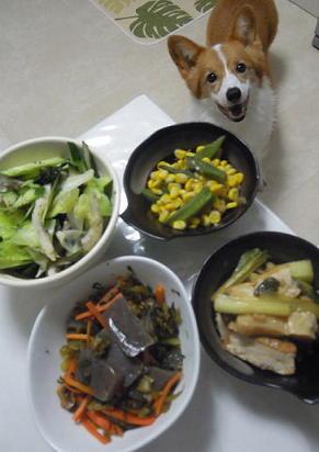 野菜盛りだくさん