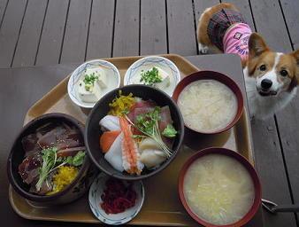 海鮮丼とマグロ丼(1)(1)