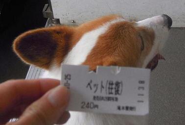 往復240円2
