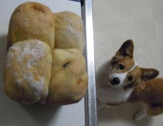おからパン