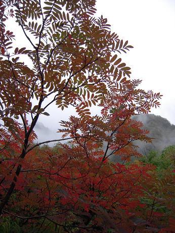 秋の涸沢 1 025