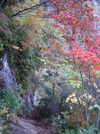 秋の焼岳 028