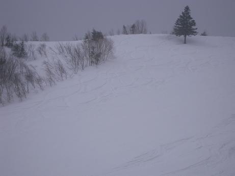 名残雪 011