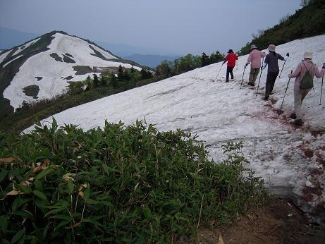 開山記念登山会 154