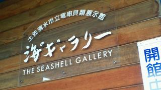 貝類展示館海のギャラリー