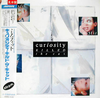 CURIOSITY KILLED THE CAT : MISFIT