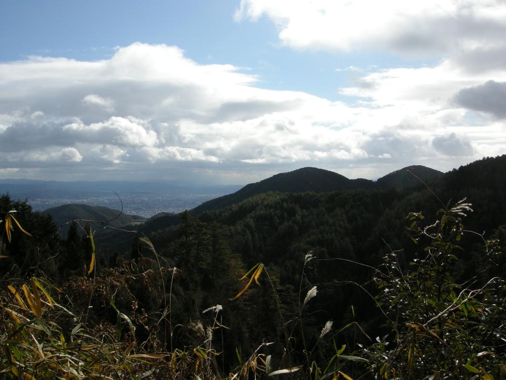 200801039.jpg