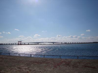 20110130_10