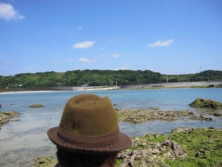 喜界島の海