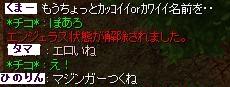 5_13_4.jpg