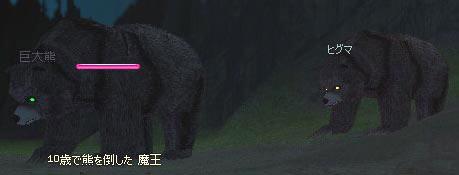 比較用:ヒグマ&巨大クマ