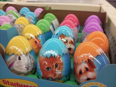卵型ならOK?
