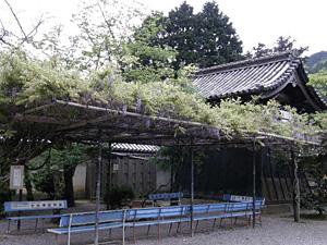 bisyamonfuji_0429_4.jpg
