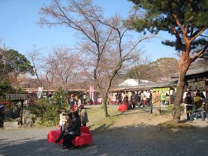 daigoji_0331_7.jpg