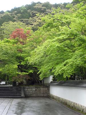 eikandou_0426_3.jpg