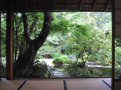 kikusui_0501_11.jpg