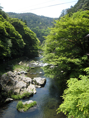 kiyotaki_0513_1.jpg