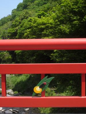 kiyotaki_0513_2.jpg