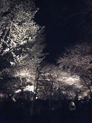 nijyo_0410_4.jpg