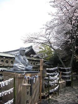 ooishi_0405_1.jpg