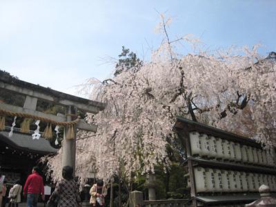 ooishi_0405_6.jpg