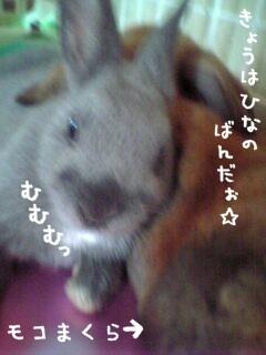04-08-08_12-49.jpg