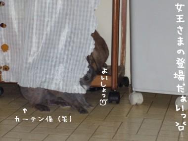 20051103183203.jpg