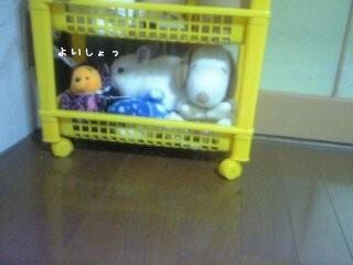 DVC00070.jpg