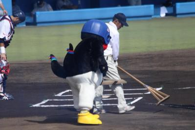 20110710tsuba8.jpg