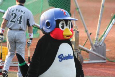 2010.8.27tsuba-5