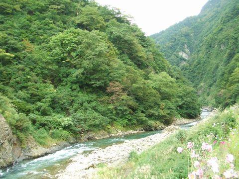 2005_0927nigata0081.jpg
