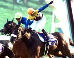 20101017-00000009-kiba-horse-view-000.jpg