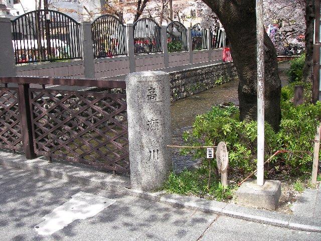 高瀬川桜まつり001