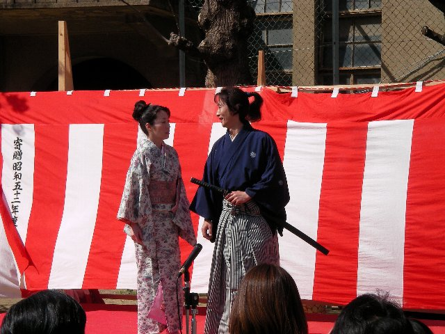 高瀬川桜まつり004