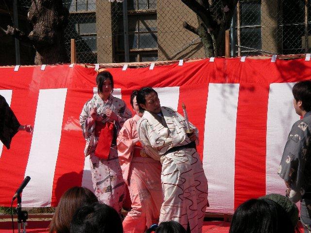 高瀬川桜まつり006