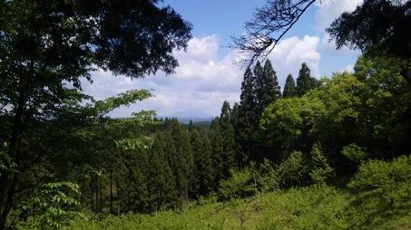 自然、熊本