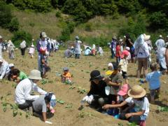 闃区、阪∴・胆convert_20100615141712