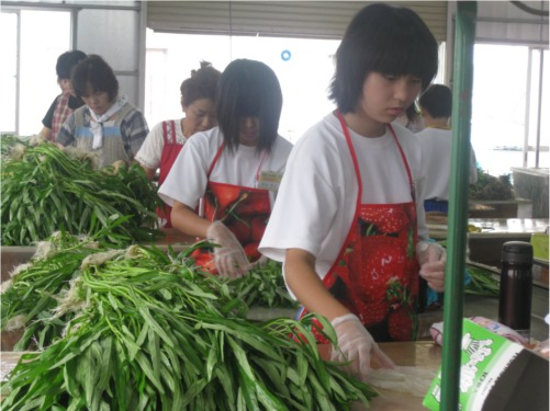 中学生の職場体験