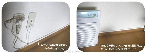 P8183329.jpg