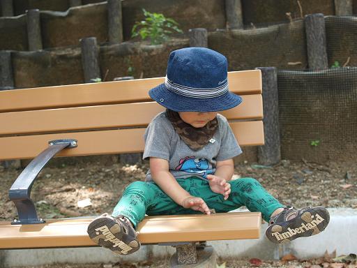 5_20100803211152.jpg