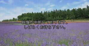 2s-.jpg