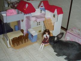 ブログ用メロ リカちゃんハウス1