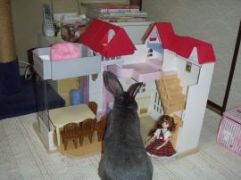 ブログ用メロ リカちゃんハウス3