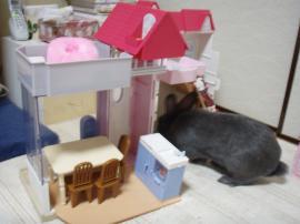 ブログ用メロ リカちゃんハウス4