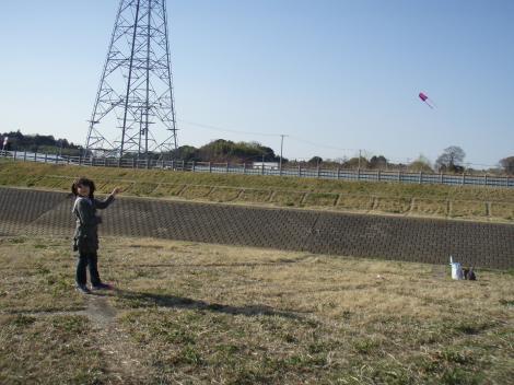 ブログ用うさんぽ凧上げ