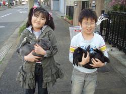 ブログ用メロ&ミミちゃん1