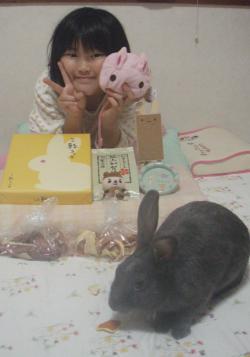 ブログ用ウサギ郵便